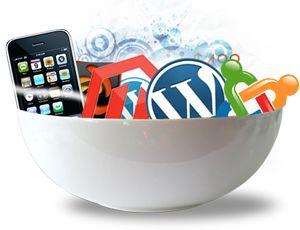 Web Development by I can infotech